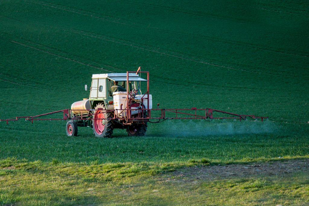 L'agriculteur, le glyphosate et le sarrasin