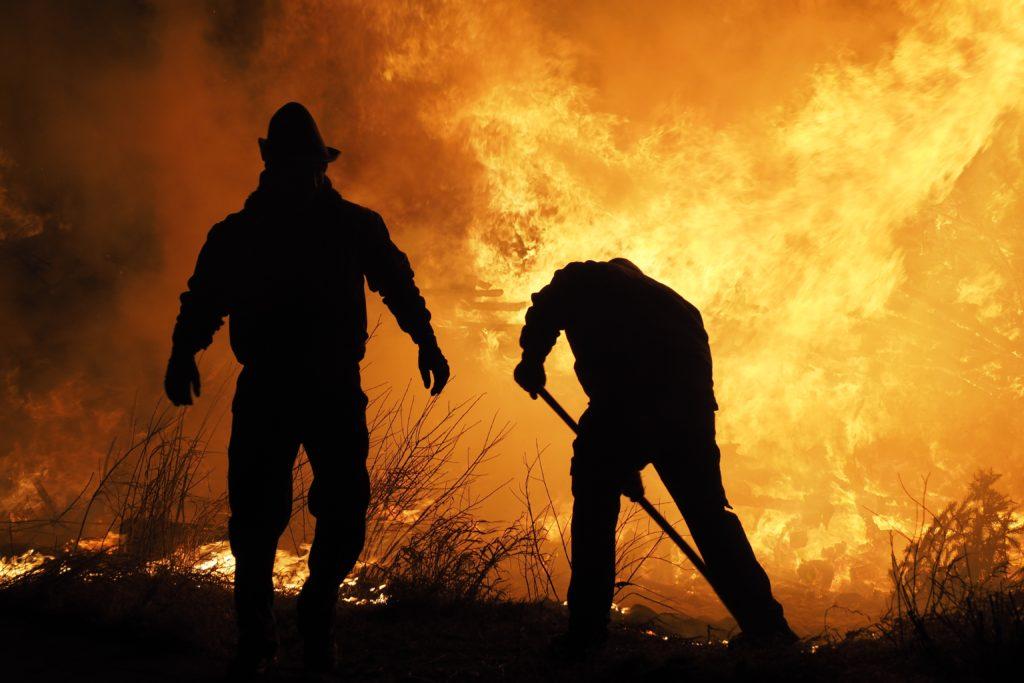 Les forêts du Bassin méditerranéen en proie aux flammes