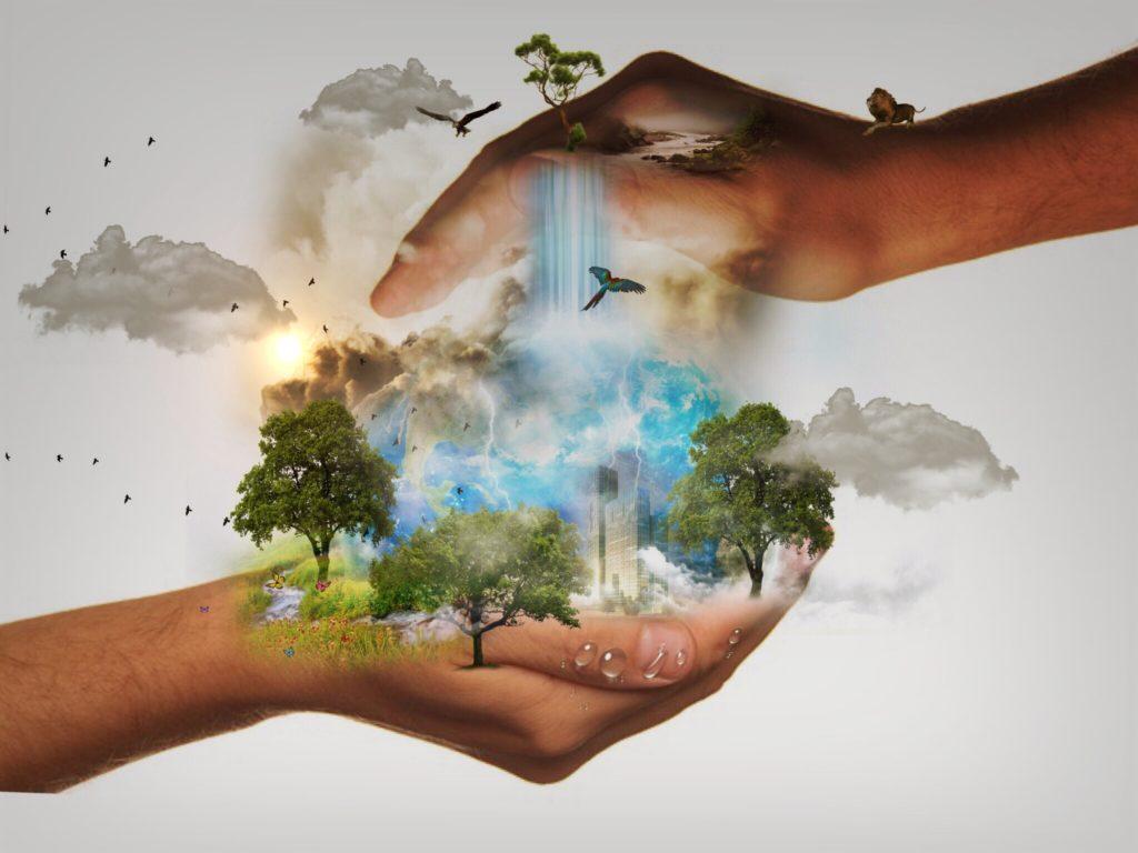 « La réussite économique ne saurait plus se faire aux dépens de la nature »